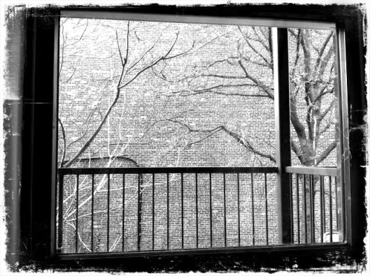 winter window2